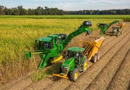 Multiple harvesters