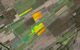 Sugar cane field yield map